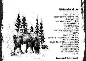 Kartka – Białowieski bór